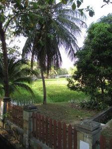 langkawi2901 002