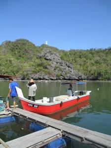 mangrove3101 025