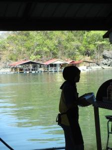 mangrove3101 036