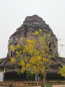 Chiangmai3 018